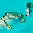 Underwater world by Lynette Higgs