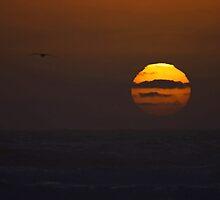 "sunset ""painting"" by dedmanshootn"