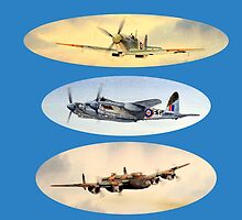 Spitfire Mosquito Lancaster Collage by bill holkham