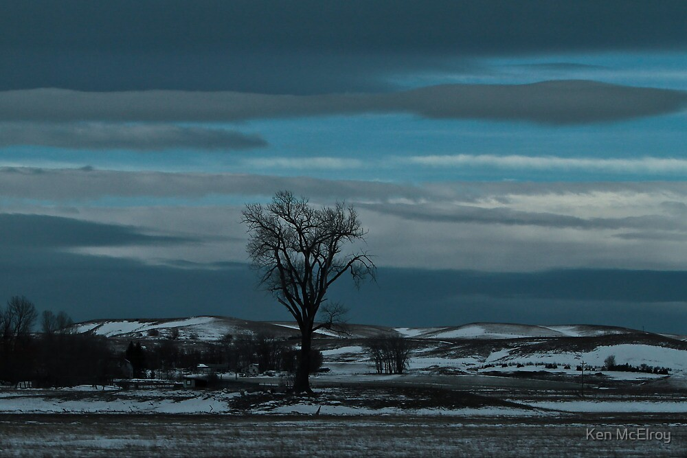 Lone Tree under Big Sky  by Ken McElroy