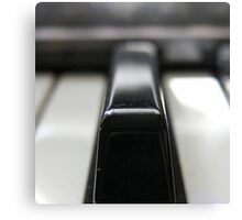 Piano Key Canvas Print