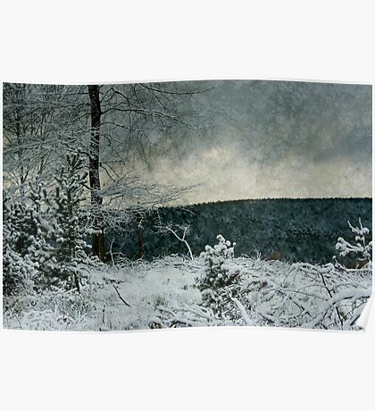 Winter Ice Poster