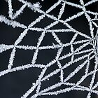 Ice Web by NSQPhotography