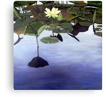 Lily Pond - oil painting Canvas Print