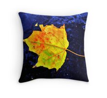 Brightness Falls Throw Pillow