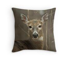 100310-16 Throw Pillow