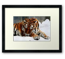 LIFE IS GREAT!!! Framed Print