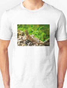 Colourful lizard in Nairobi Safari Park, KENYA  T-Shirt