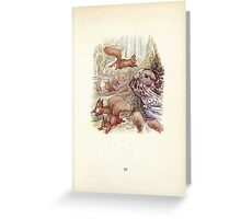 The Tale of Squirrel Nutkin Beatrix Potter 1903 0053 Flutterment Scufflement Squeak Greeting Card