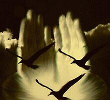 Letting go by iamelmana