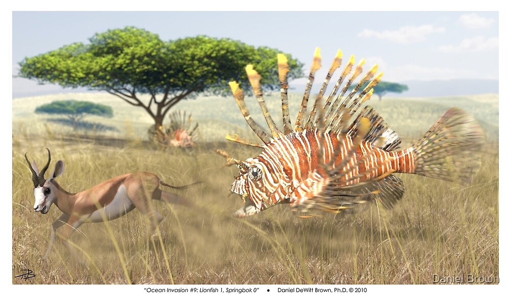 Ocean Invasion #9: Lionfish 1, Springbok 0 by Daniel Brown
