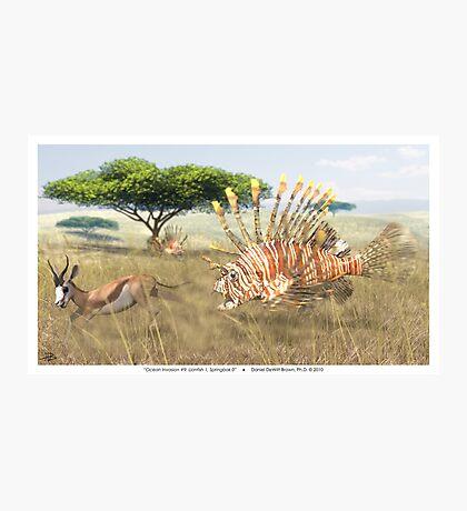 Ocean Invasion #9: Lionfish 1, Springbok 0 Photographic Print