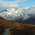 Road to Hatcher Pass by Sally Winter