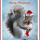 Here Comes Santa by Brenda Boisvert