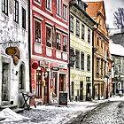 Winter wonderland by Sunsetsim