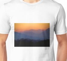Last flight at sunset Unisex T-Shirt