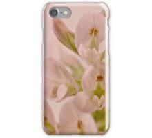 Milkvetch Wild Flower Macro iPhone Case/Skin