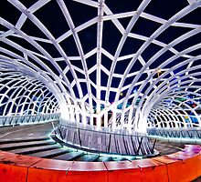 Webb Vortex Bridge by Gavin Poh