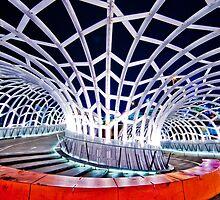 Webb Vortex Bridge by Gavin Poh