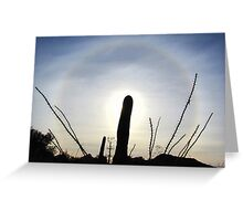 Sun Halo ~ Cactus Silhouette  Greeting Card