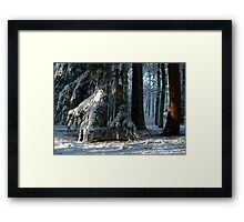 Doorway to the sacred place Framed Print