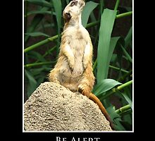 ZooTips: Be Alert by Angie Dixon