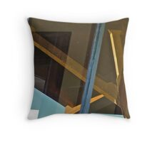 Canopy Reflection in the Window  Throw Pillow