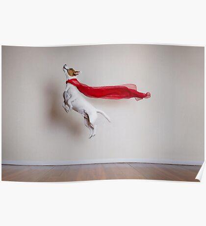 Super Dog Poster
