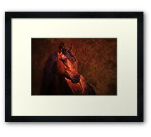"""Chief: Collaboration with """"George Lenz"""" Framed Print"""