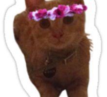 Cat with Flower crown Sticker