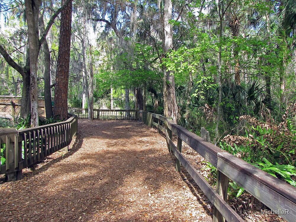 The Pretty Path by MichelleR