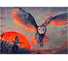 Owl Hunt Photographic Print