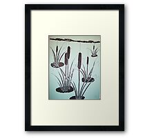 Grey-green morning on the pond Framed Print