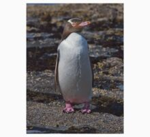 Adorbz Yellow-eyed Penguin Kids Clothes