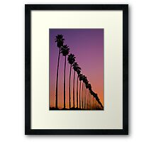 Redlands Palm Sunset Framed Print