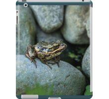AMONG ROCKS iPad Case/Skin