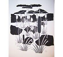 Swamp Reeds Photographic Print