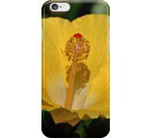 Hibiscus iPhone Case/Skin