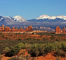 Arches National Park by Julia Washburn