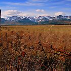 Prairie to Peak by JamesA1