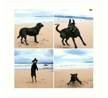 Omar at Apollo Bay Art Print