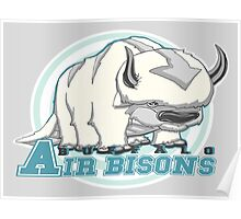 Buffalo Air Bisons Poster