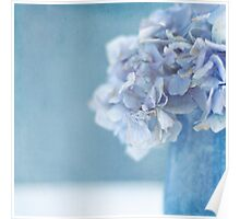 Hydrangea Blues Poster