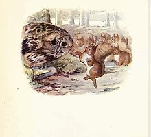 The Tale of Squirrel Nutkin Beatrix Potter 1903 0050 Danced Like a Sunbeam by wetdryvac