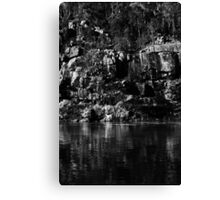 Looking for faces Canvas Print
