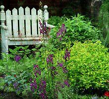 Garden Bench & Verbascum by enchantedImages