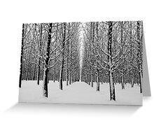Winters point of view Greeting Card
