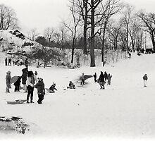 Sledders in Snowy Central Park, NYC by dearmoon