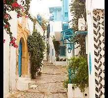 Streets of Sidi Bou Said by Tim Topping