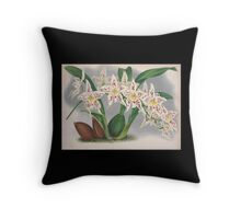 Iconagraphy of Orchids Iconographie des Orchidées Jean Jules Linden V4 1888 0154 Throw Pillow